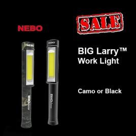 BIG Larry Light